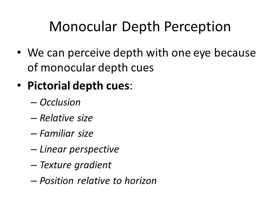 Monocular Depth Perception