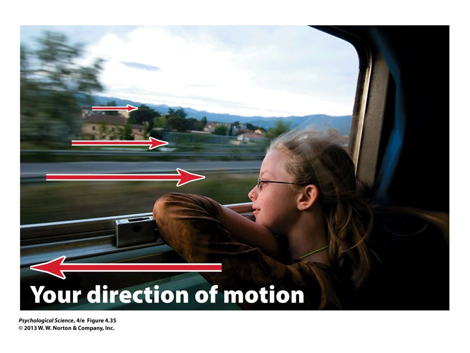 FIGURE 4.35 Motion Parallax