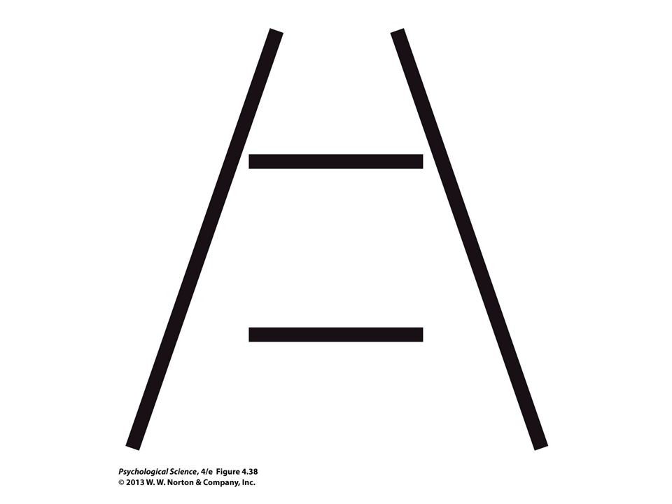 FIGURE 4.38 The Ponzo Illusion