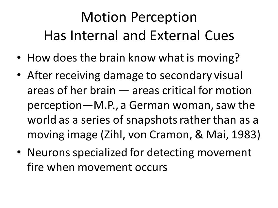 Motion Perception Has Internal and External Cues