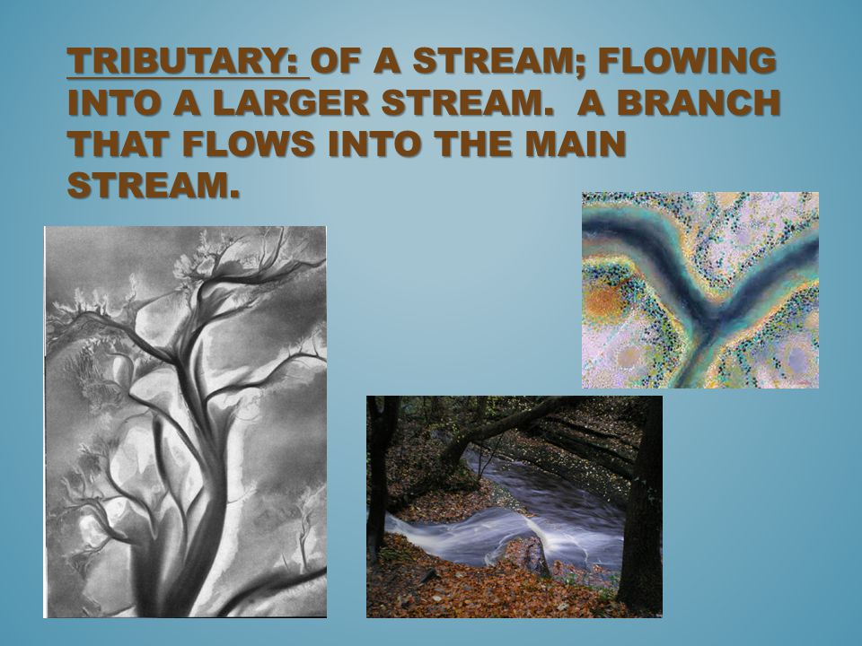 Tributary: of a stream; Flowing into a larger stream