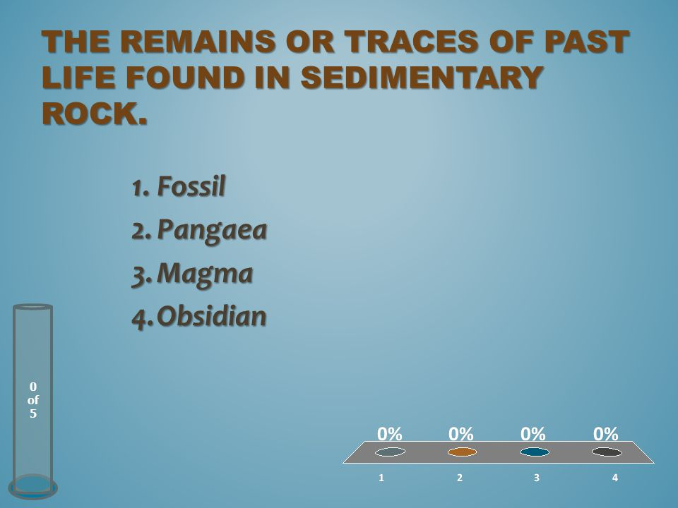 The remains or traces of past life found in sedimentary rock.