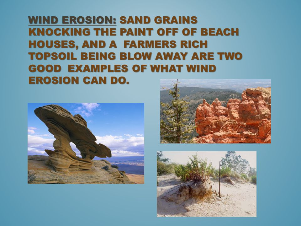 Wind Erosion: Sand grains knocking the paint off of beach houses, and a Farmers rich topsoil being blow away are two good examples of what wind erosion can do.