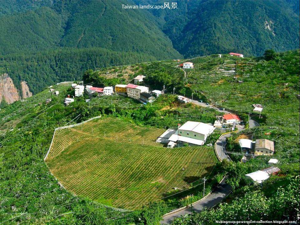 Taiwan landscape风景
