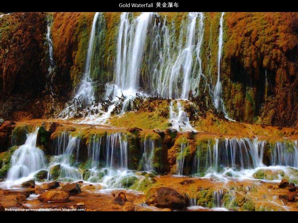 Gold Waterfall 黄金瀑布