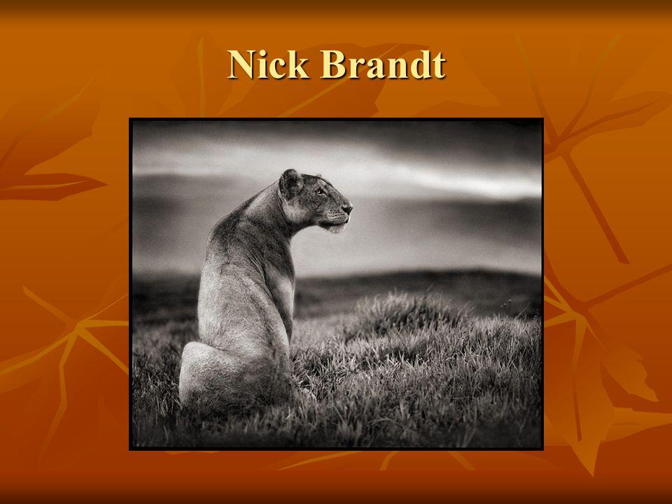 Nick Brandt