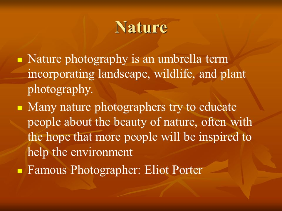 Nature Nature photography is an umbrella term incorporating landscape, wildlife, and plant photography.