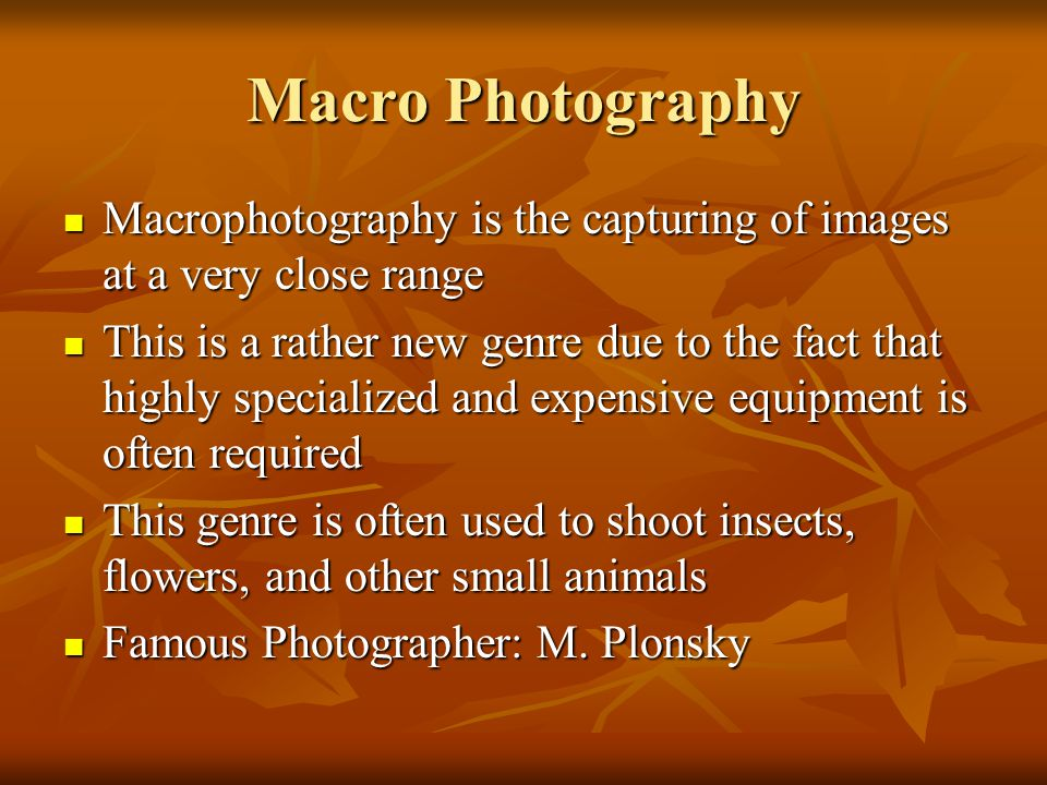 Macro Photography Macrophotography is the capturing of images at a very close range.