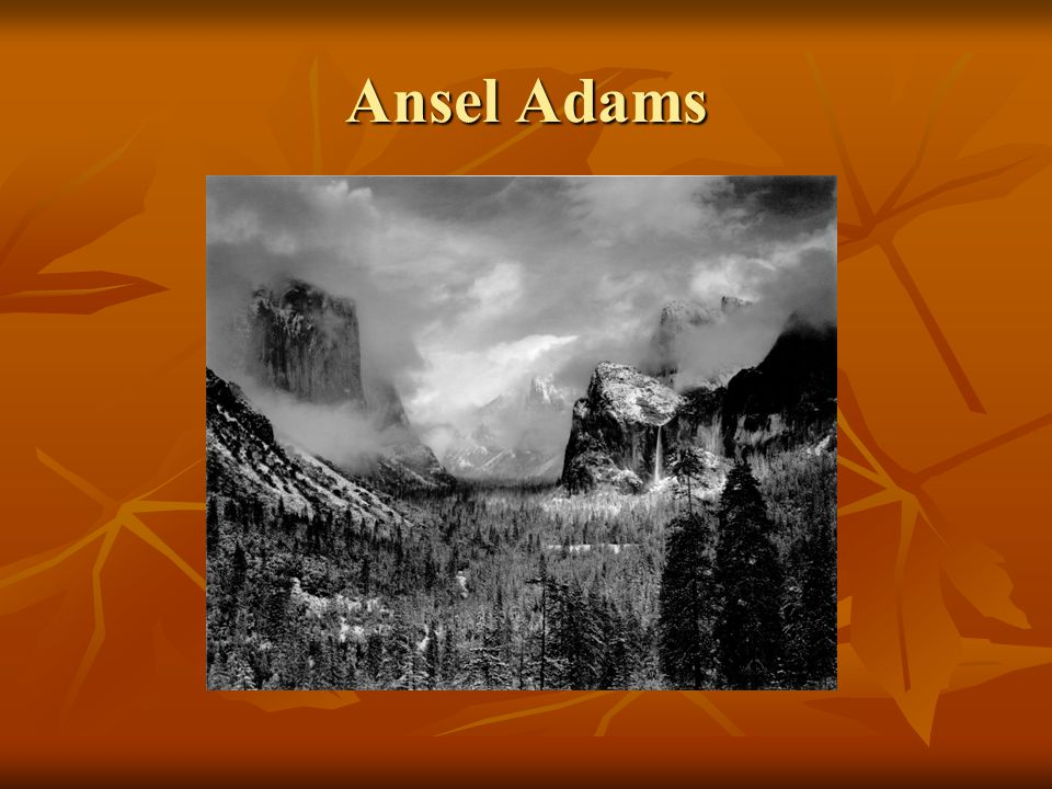 Ansel Adams Ansel Adams was a visionary figure in nature photography and wilderness preservation.