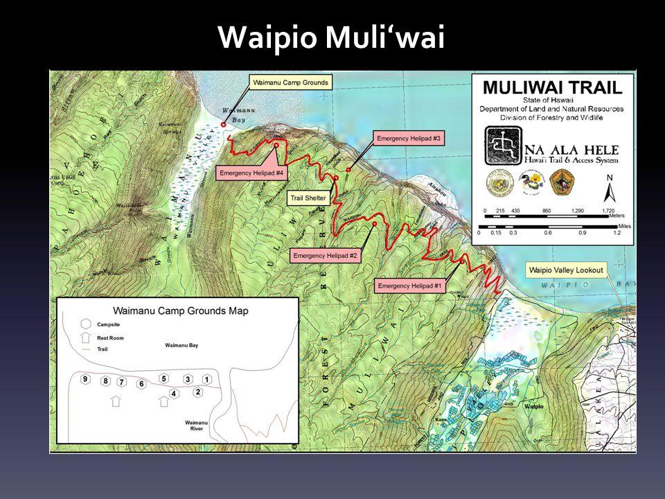 Waipio Muliʻwai