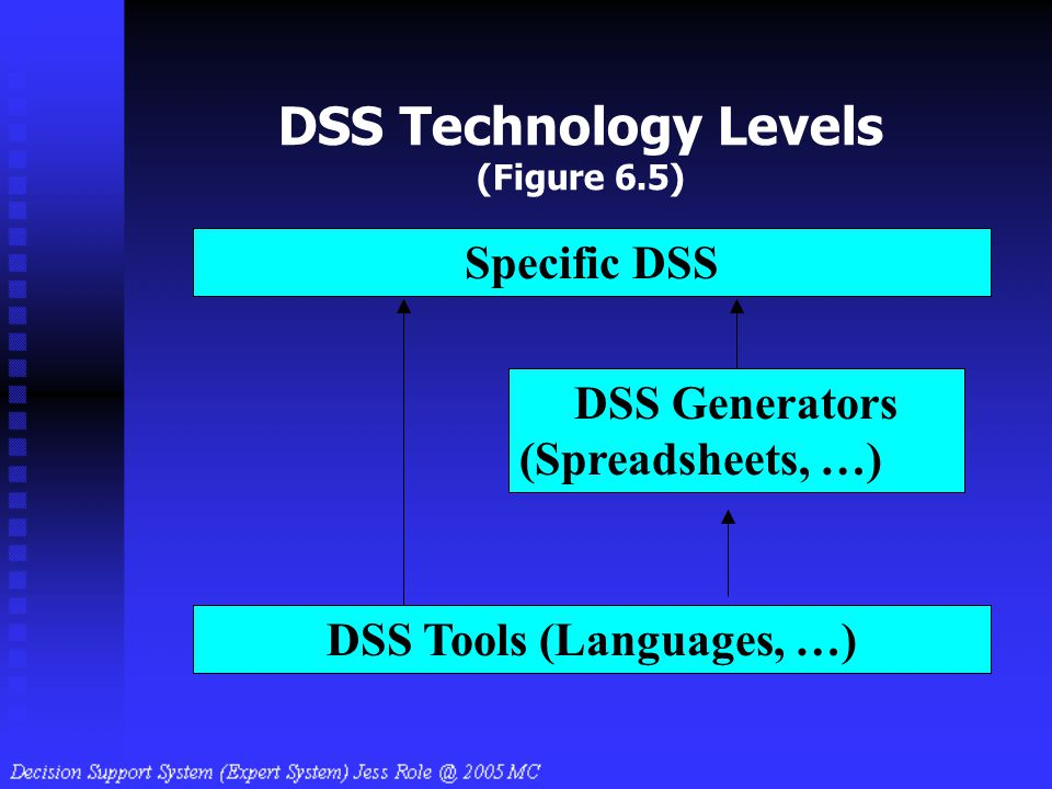 DSS Technology Levels (Figure 6.5)