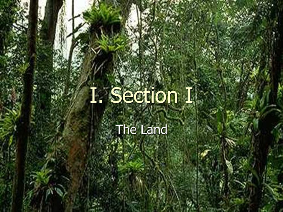 I. Section I The Land Ch 8 PP