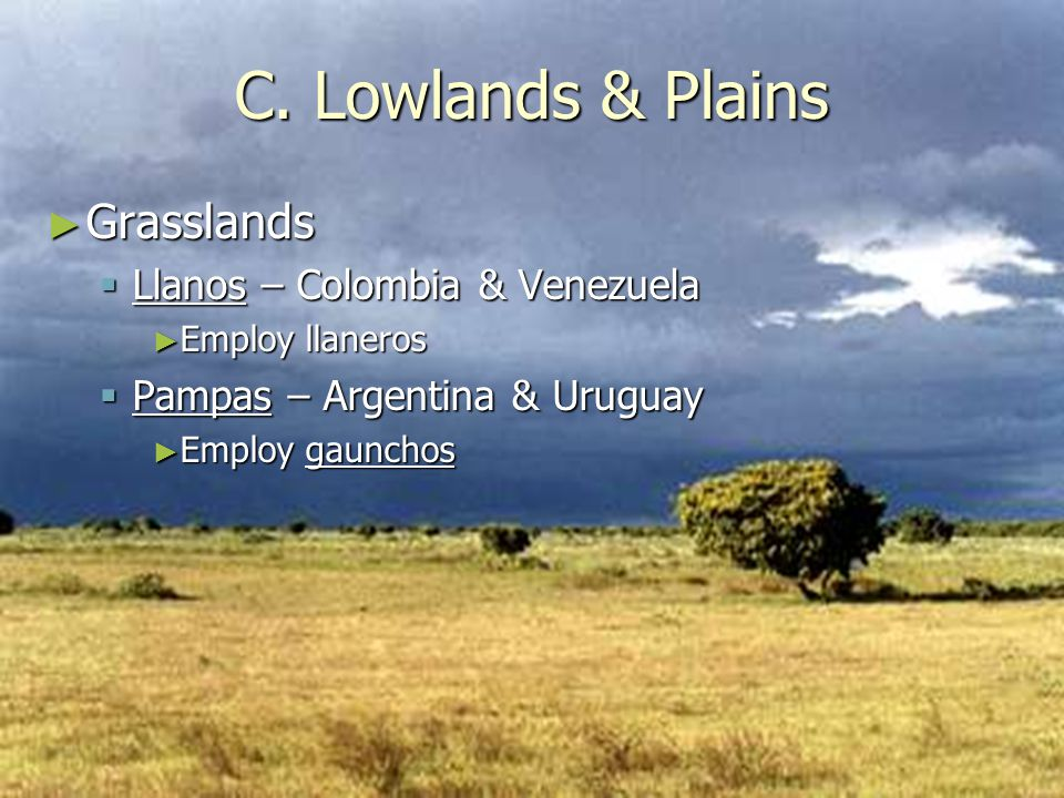 C. Lowlands & Plains Grasslands Llanos – Colombia & Venezuela