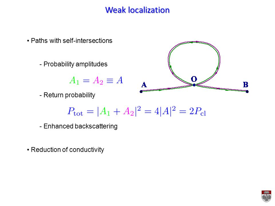 Weak localization Paths with self-intersections