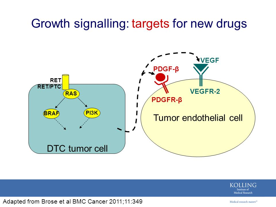 Growth signalling: targets for new drugs