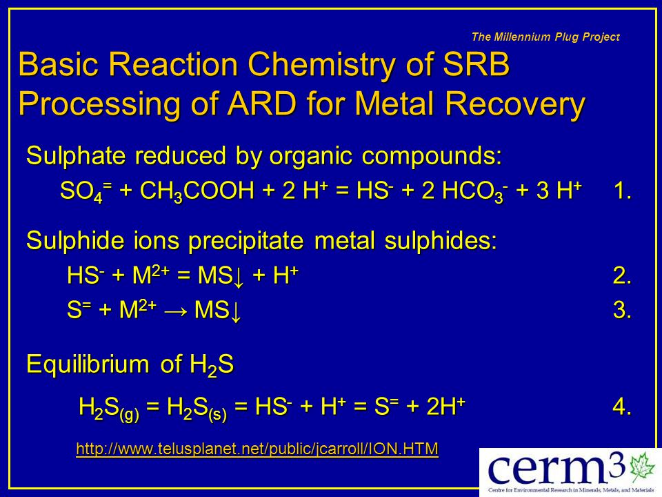 Basic Reaction Chemistry of SRB Processing of ARD for Metal Recovery