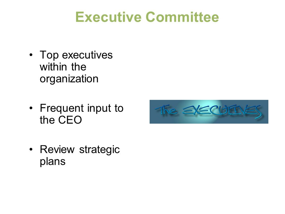 Executive Committee Top executives within the organization
