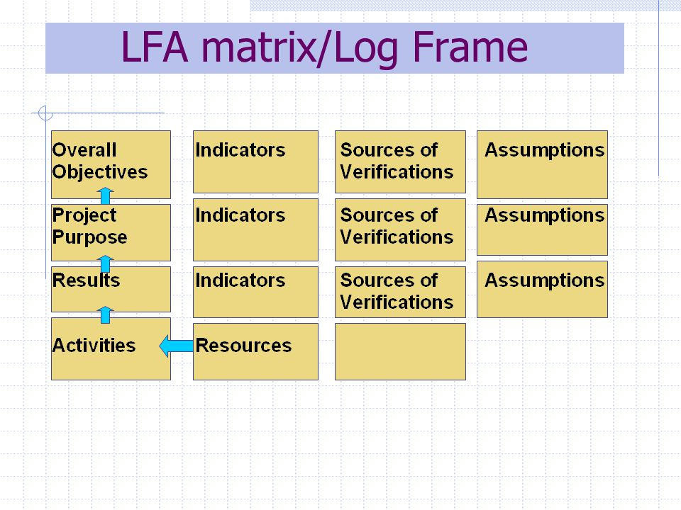 LFA matrix/Log Frame