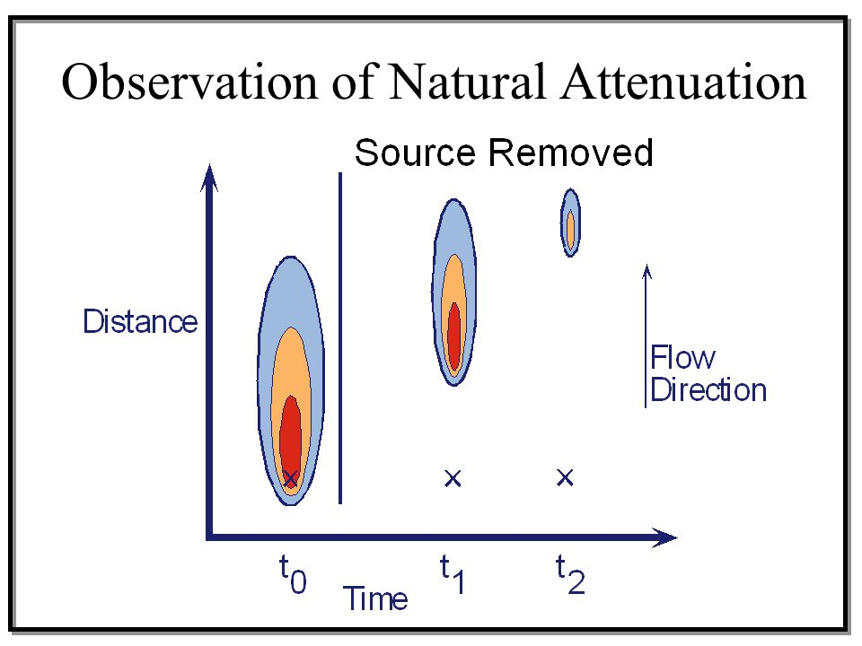 Observation of Natural Attenuation
