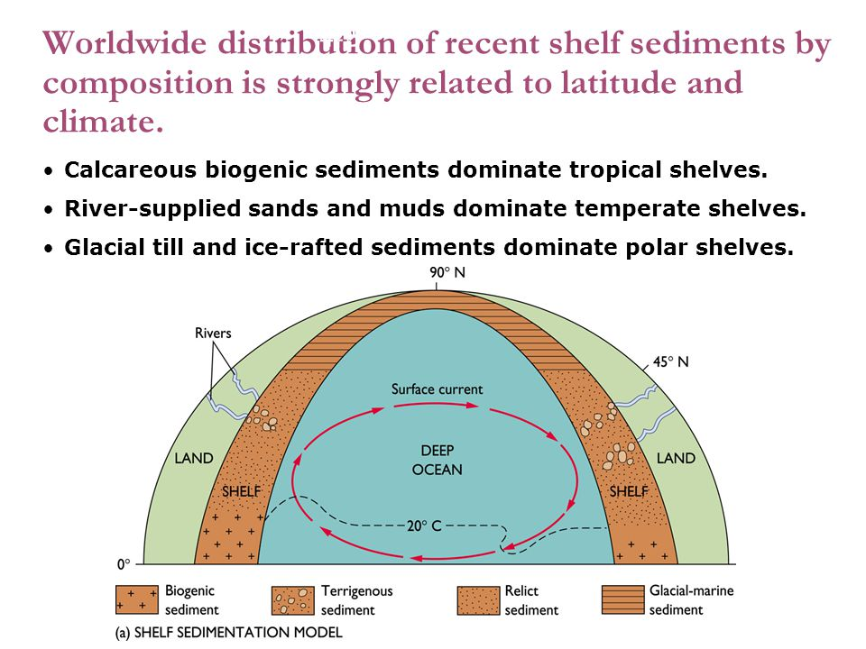 4-2 Worldwide distribution of recent shelf sediments by composition is strongly related to latitude and climate.