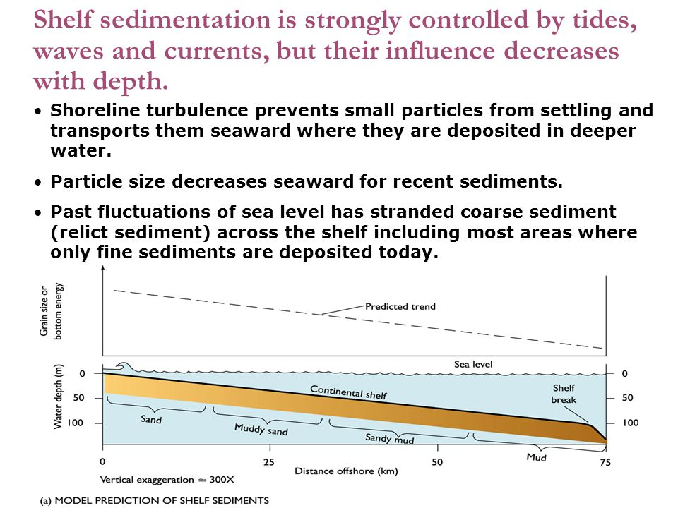 Shelf sedimentation is strongly controlled by tides, waves and currents, but their influence decreases with depth.