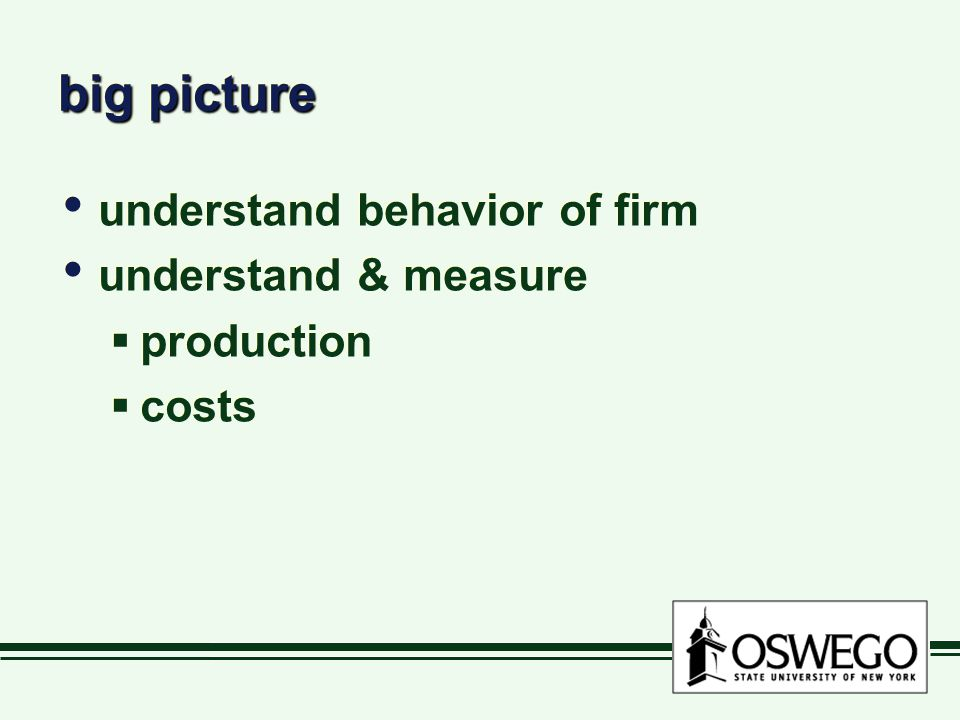 big picture understand behavior of firm understand & measure