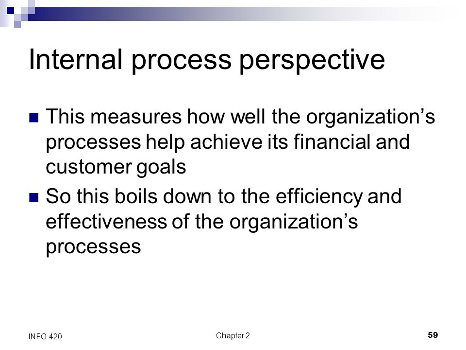 Internal process perspective