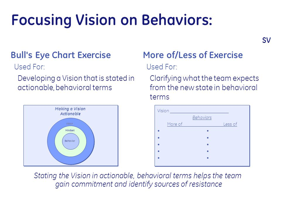 Focusing Vision on Behaviors: SV