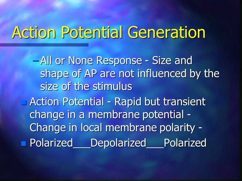 Action Potential Generation