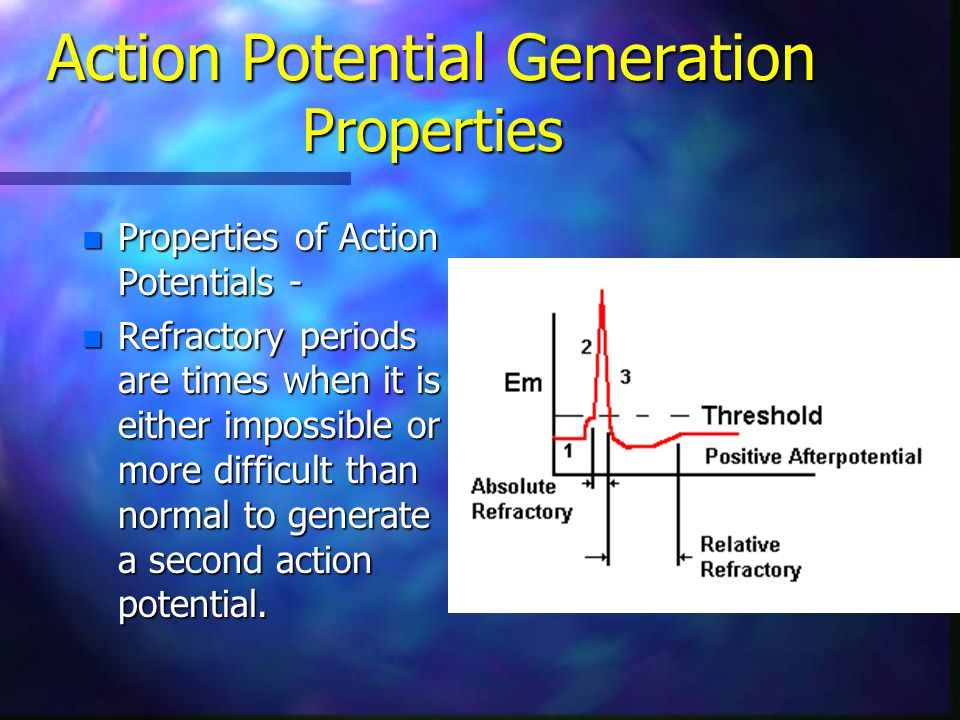 Action Potential Generation Properties