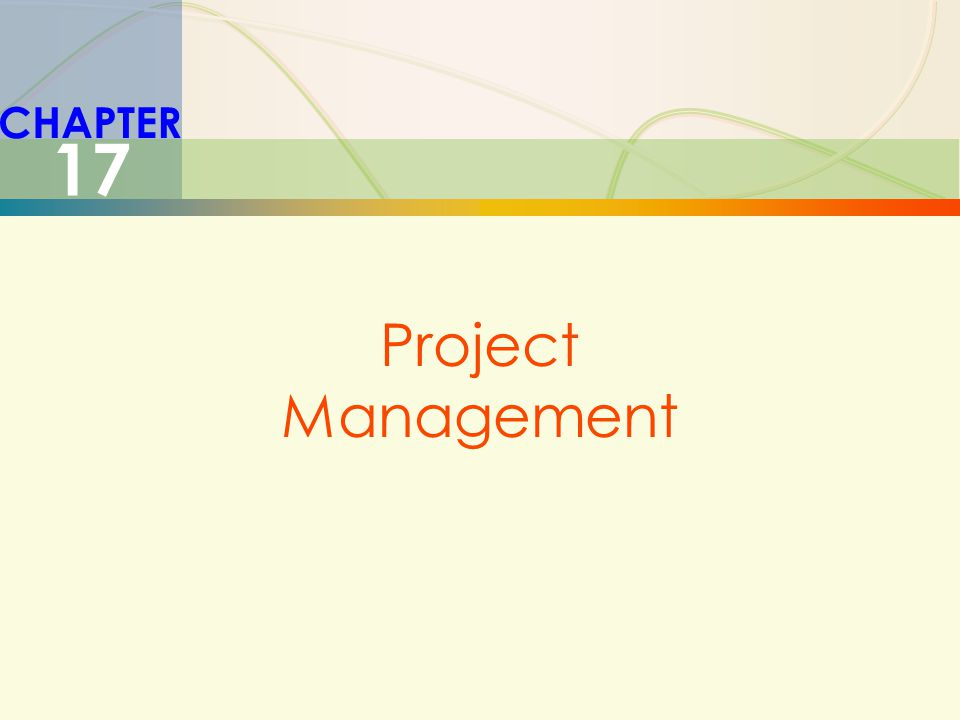 CHAPTER 17 Project Management