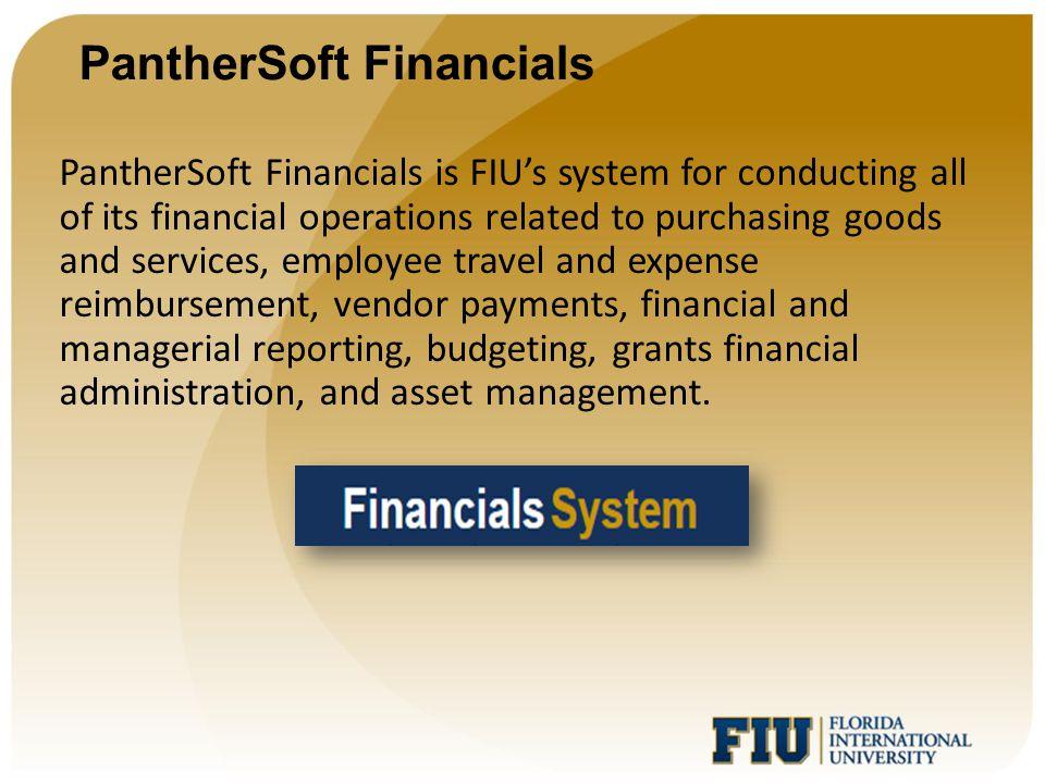 PantherSoft Financials