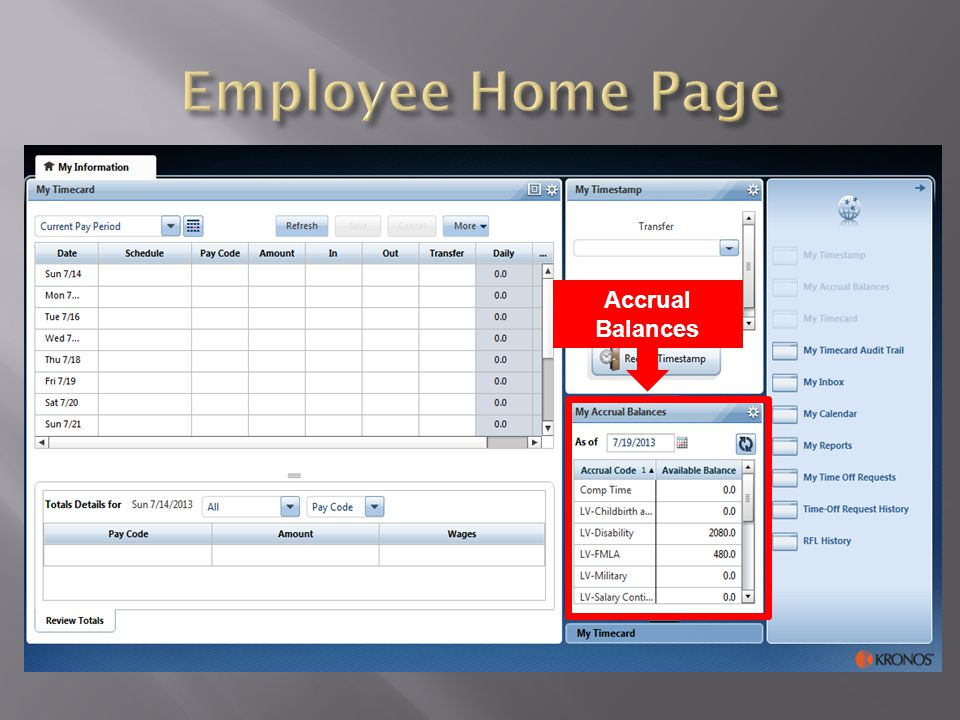 Employee Home Page Accrual Balances