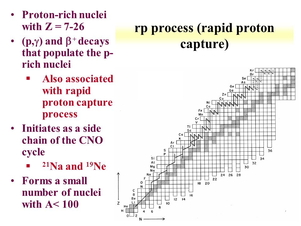 rp process (rapid proton capture)