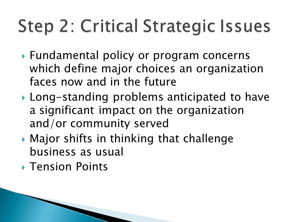 Step 2: Critical Strategic Issues