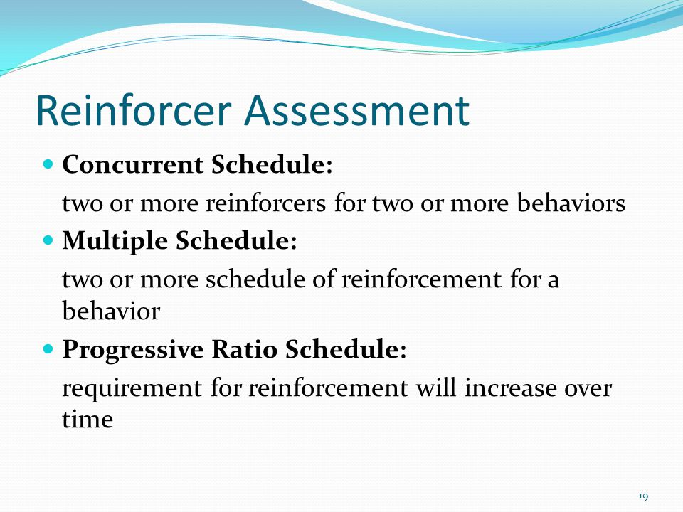 Reinforcer Assessment