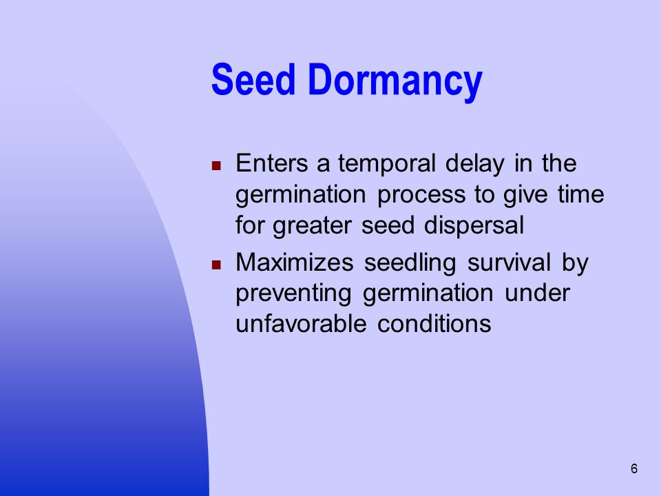 Seed Dormancy Enters a temporal delay in the germination process to give time for greater seed dispersal.