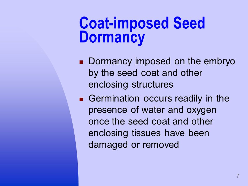 Coat-imposed Seed Dormancy