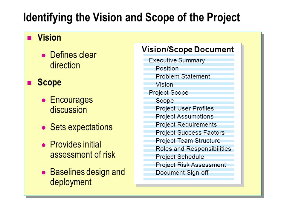 Identifying the Vision and Scope of the Project