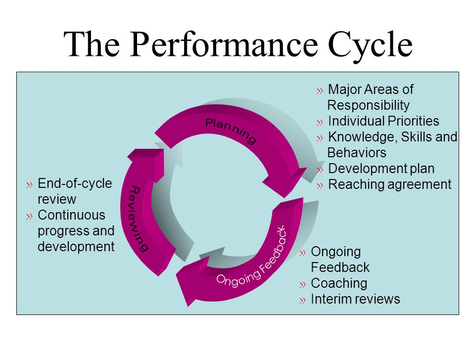 The Performance Cycle Major Areas of Responsibility