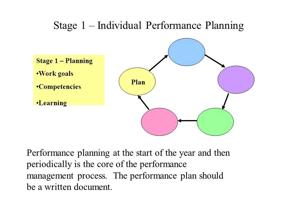 Stage 1 – Individual Performance Planning