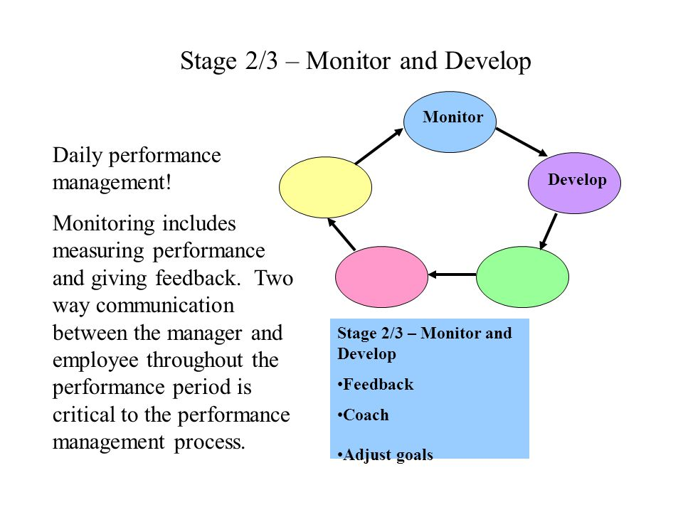 Stage 2/3 – Monitor and Develop