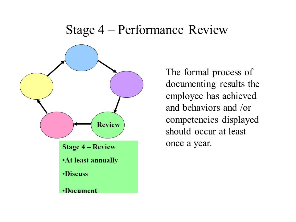 Stage 4 – Performance Review