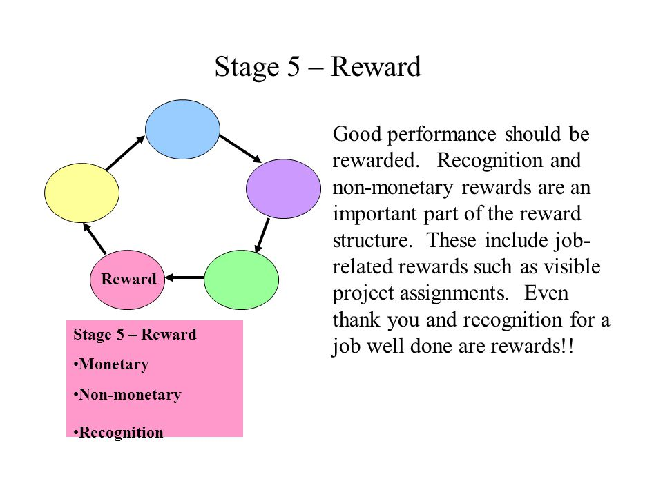 Stage 5 – Reward