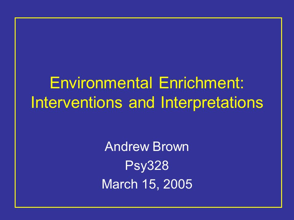 Environmental Enrichment: Interventions and Interpretations