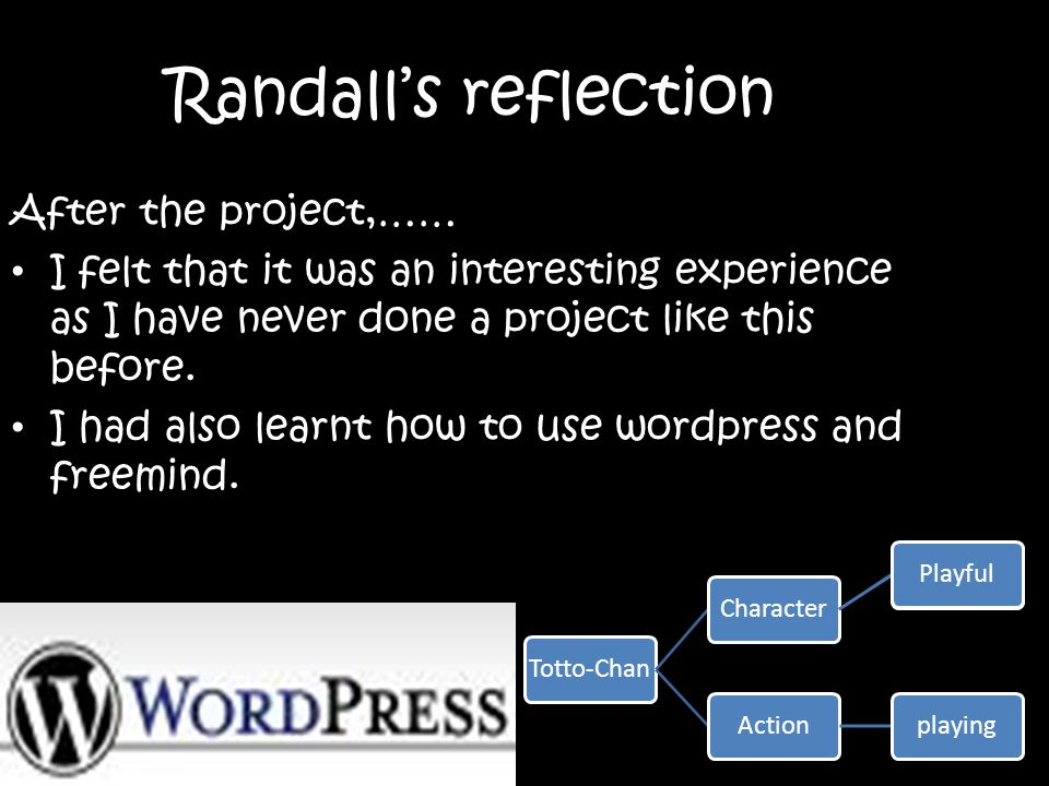 Randall's reflection After the project,……