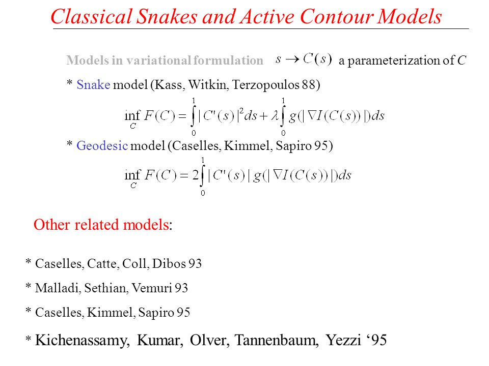 Classical Snakes and Active Contour Models