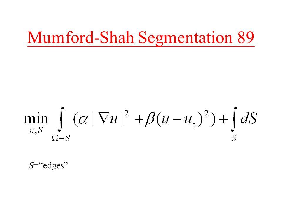 Mumford-Shah Segmentation 89