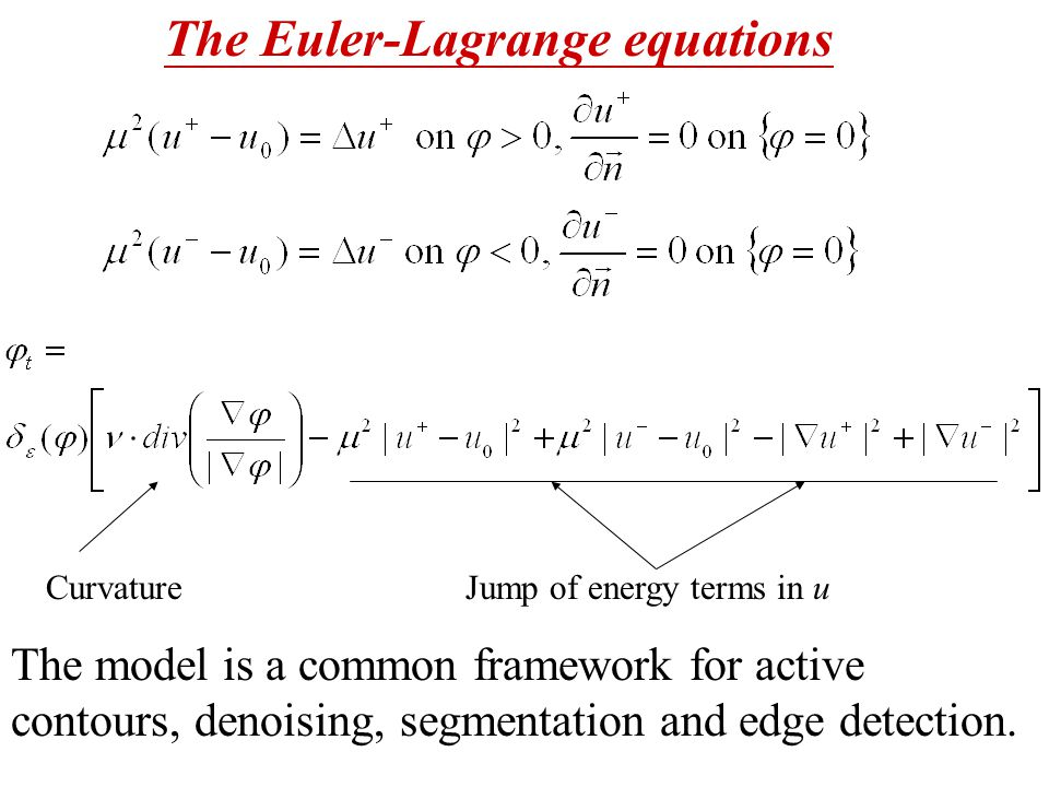 The Euler-Lagrange equations