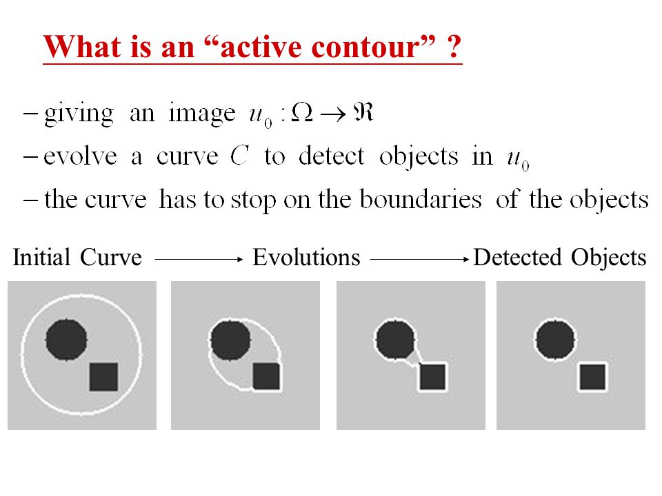 What is an active contour